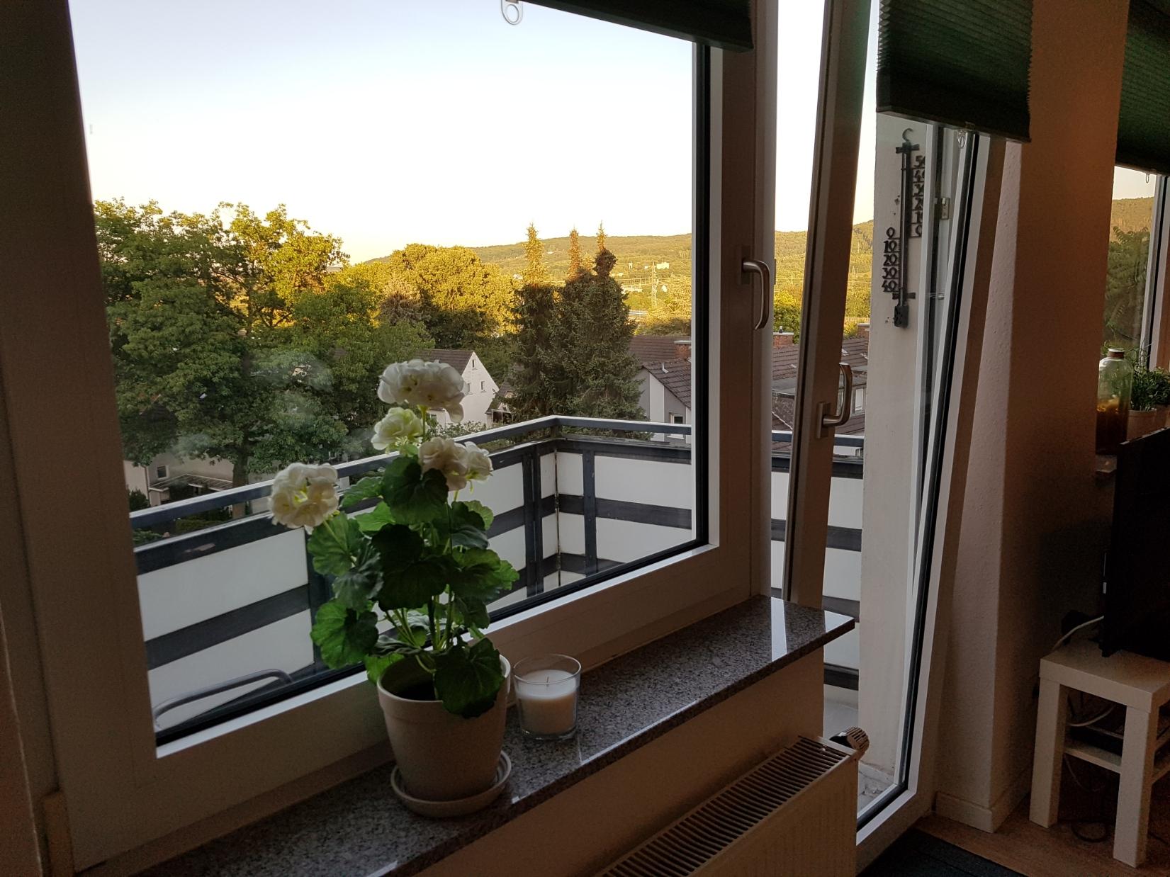 Apartment Wetter Ausblick